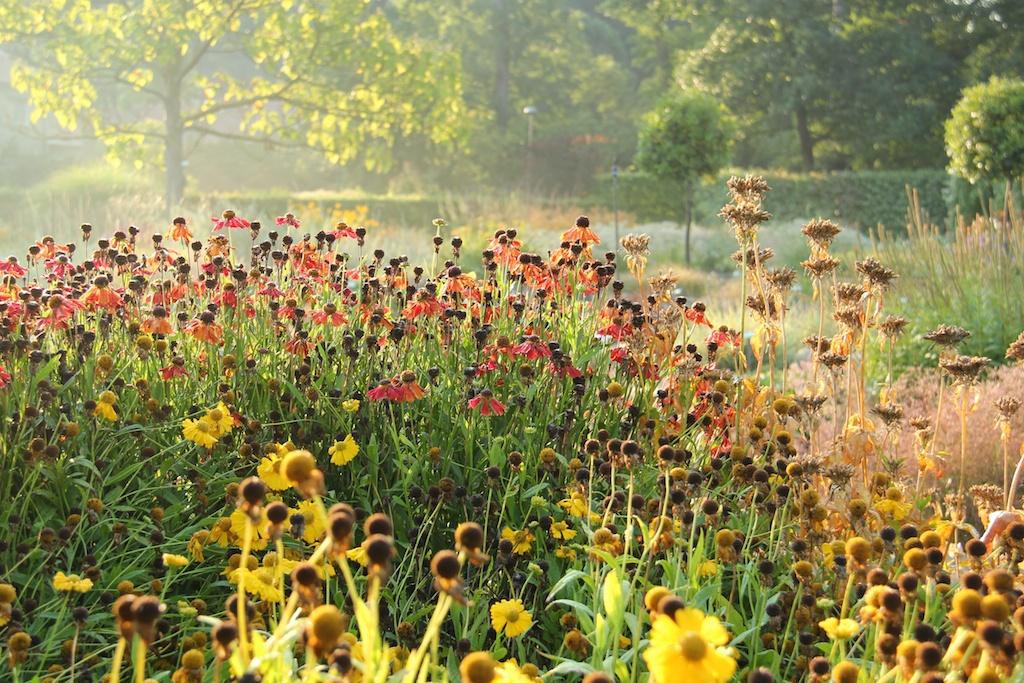 Trädgårdshelg 10-11 sept